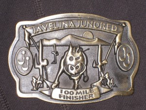 The 'Small' Finisher Buckle